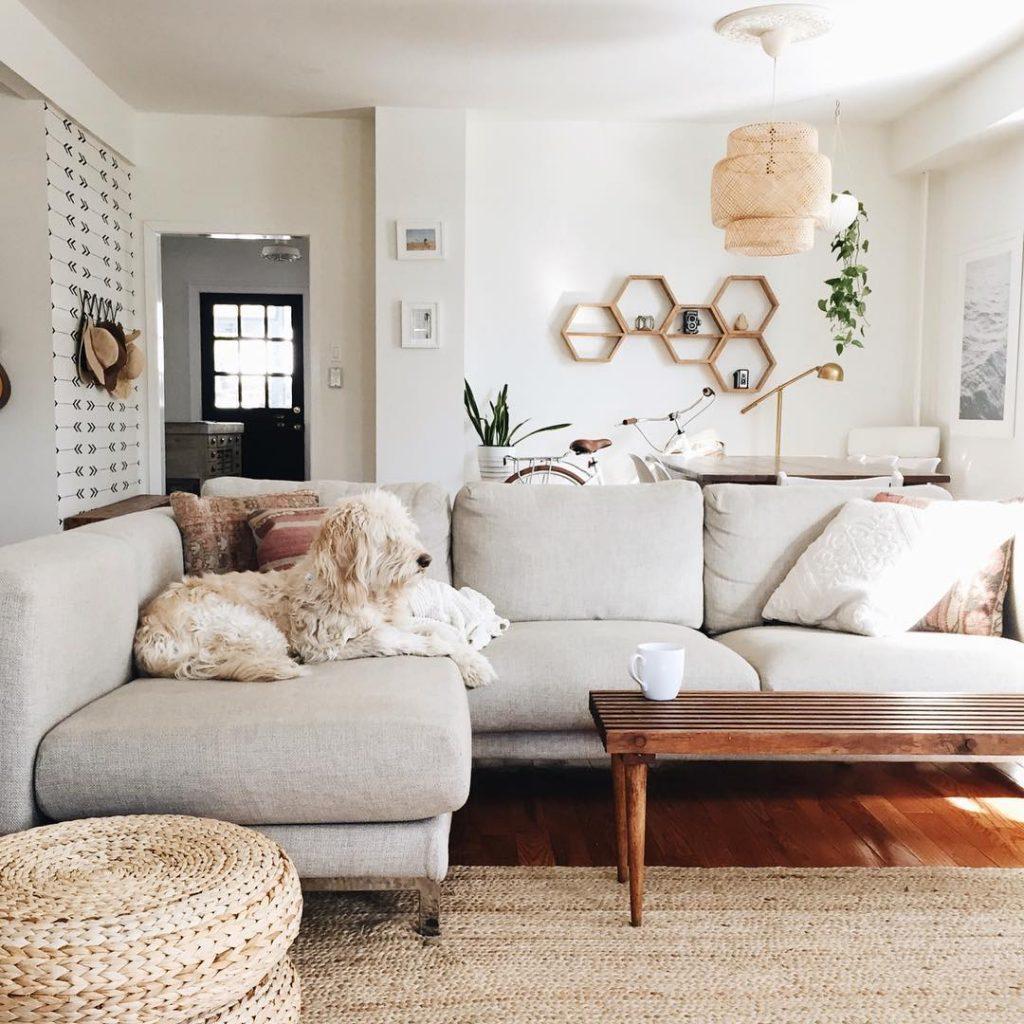 Modern Living Room with Dog