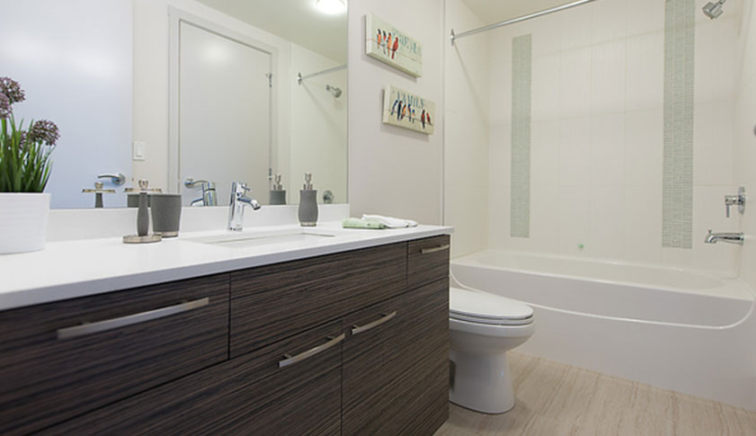 Residences at Hotel Blu Apartment for Rent Bathroom