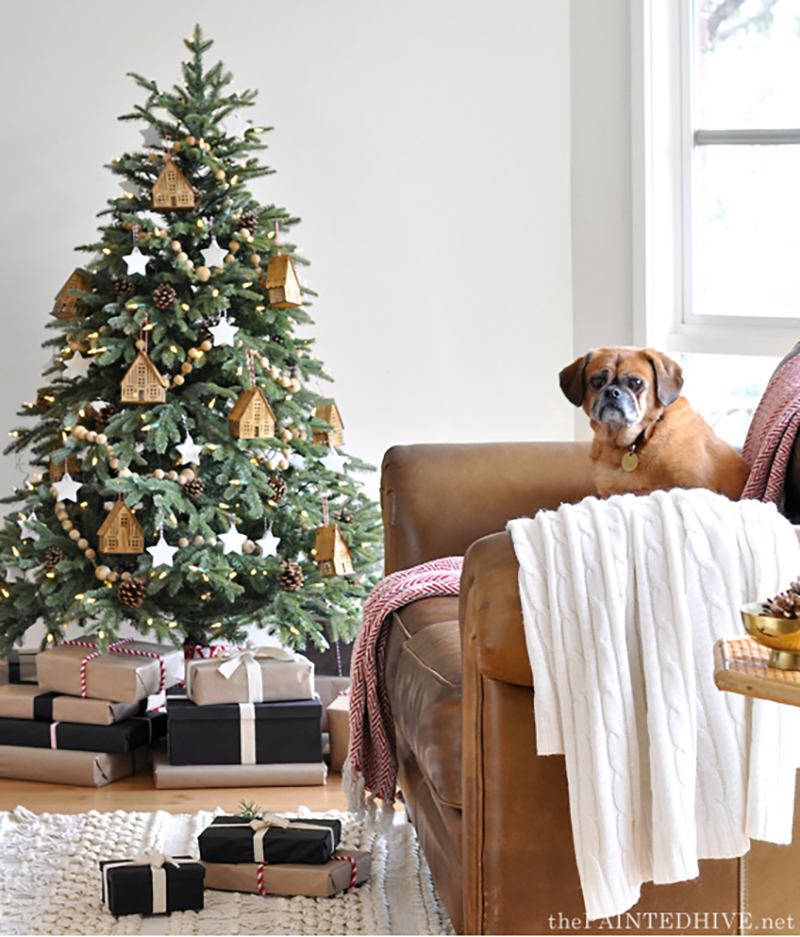 Fraser Fir Christmas Tree with Dog on Couch
