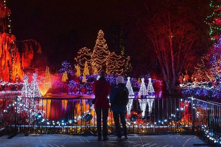 Switched On – Our Fave Festive Light Displays in Vancouver! - Liv Rent Blog