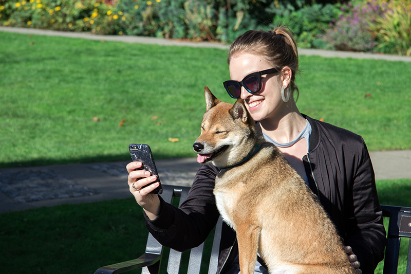 Canadian sitting on bench in park with shiba