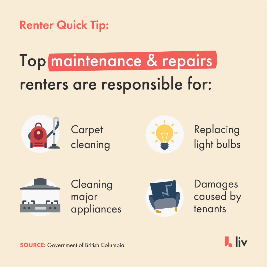 Rental Property - What are tenants responsible for?