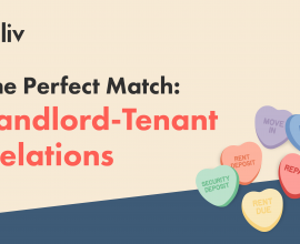 How to have a good relationship with your landlord or tenant.